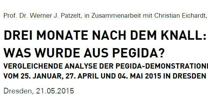 Studie_Patzelt