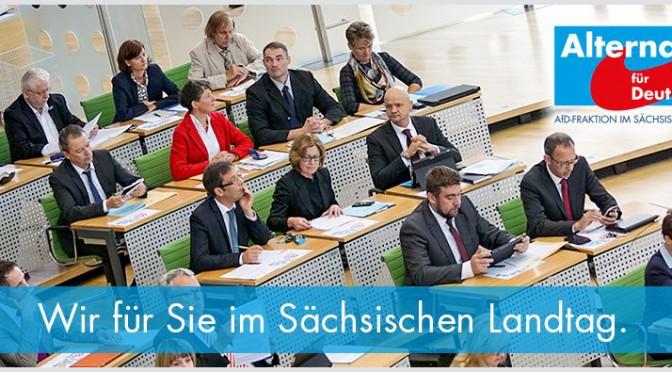 Startseite der Homepage der AfD-Fraktion im Sächsischen Landtag (Quelle: Screenshot)